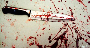bloody_knife_2_by_evilscar93-d3kt82q