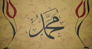Knjiga: Neporecivi argumenti istinitosti Muhammedovog, sallallahu alejhi ve sellem, poslanstva