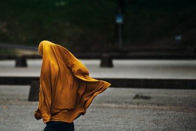 """ODNOS SA OKOLINOM; HIDŽAB; """"TRADICIONALNI ISLAM"""" I ODGOJ"""